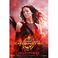 Hunger Games Catching Fire Movie Poster 27 x 40